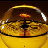 人気沸騰中のアマニオイルやエゴマオイルの主成分αリノレン酸の効果とは