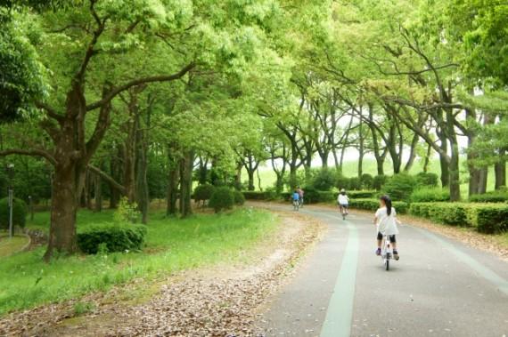 運動の秋!『サイクリング』で心身のリセットをする方法