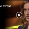 ストレスが健康に害を及ぼすメカニズムが判明!その対策とは?