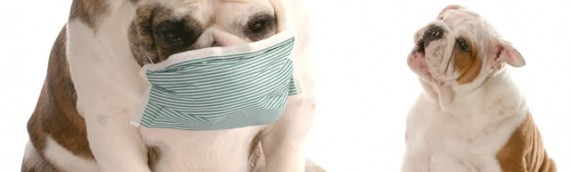 インフルエンザ流行目前!予防と対策はお早めに