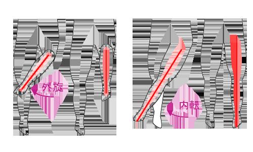 股関節の状態