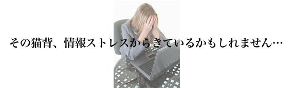 情報ストレス