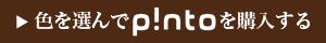 p!nto_sp_banner